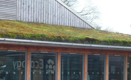 grass-roof