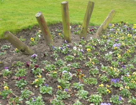 council-flower-bed